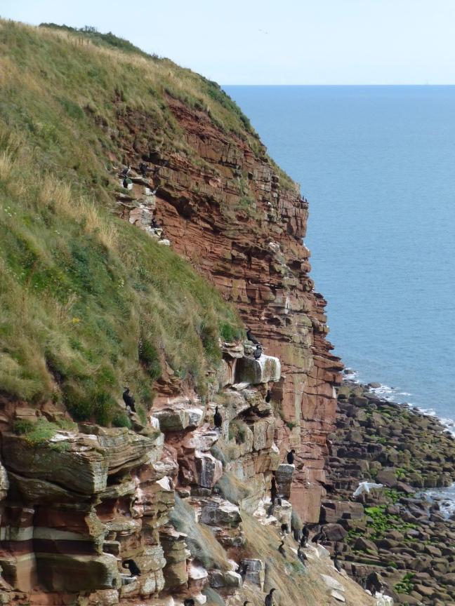 St Bees Heritage Coast
