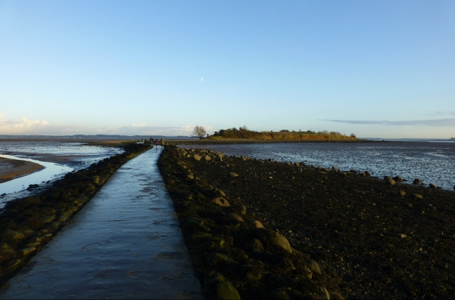 Rough Island, Strangford Lough