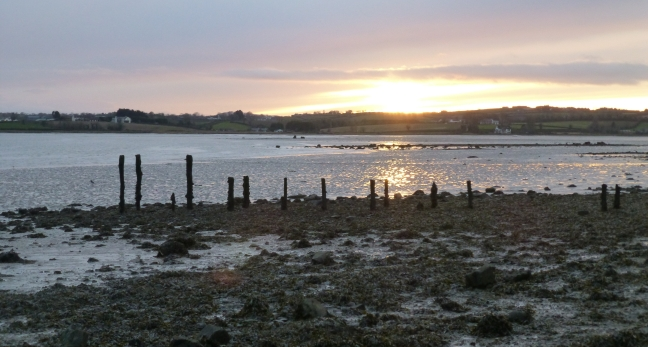 Comber Estuary, Strangford Lough