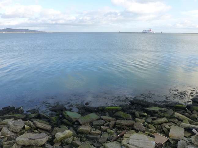The View of the Bay from Dublin Port